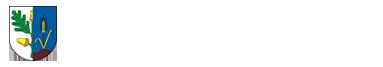 Lokalny Program Rewitalizacji Gminy Dąbie do roku 2023